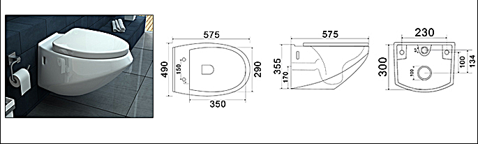 Scheda Tecnica WC PERLA TT113